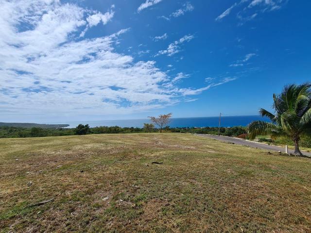 residential-lot-in-whitehouse-westmoreland-jamaica-ushombi-3