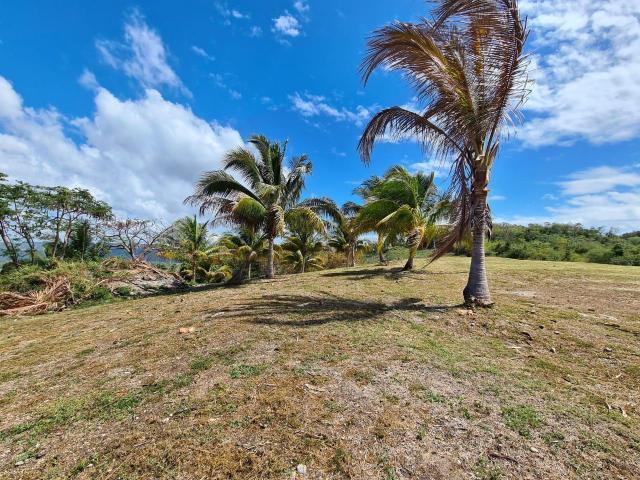 residential-lot-in-whitehouse-westmoreland-jamaica-ushombi-5