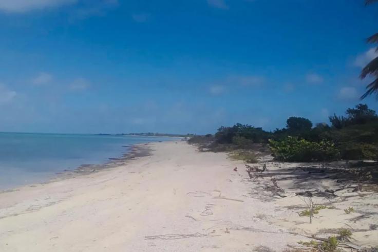 beachfront-acreage-lots-a-and-b-other-bahamas-bahamas-ushombi-5