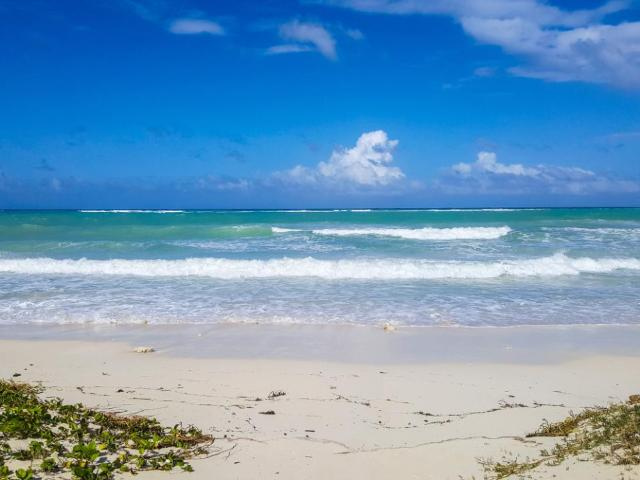 duncans-ave-residential-lot-duncans-bay-jamaica-ushombi-10