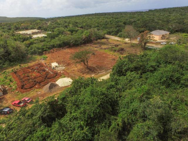 duncans-ave-residential-lot-duncans-bay-jamaica-ushombi-4