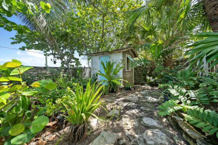 ty-melyn-819-west-bay-street-tropical-gardens-west-bay-street-np-bahamas-ushombi-22